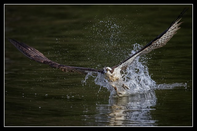 Splash-Down...