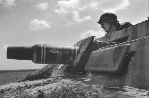 """Sd Kfz 251/9C (7,5 cm) """"Stummel"""""""