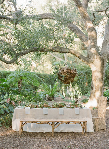 Picnic — Photo Courtesy Kim Wisely from Flutter magazine at Florabundance Inspirational Design Days.  Designer is Francoise Weeks | by Flower Factor
