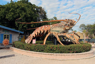 Giant Lobster | by karlnorling