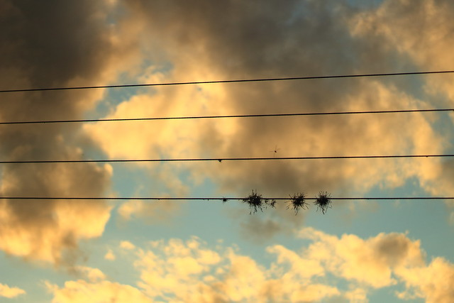 Reto semanal: Nubes