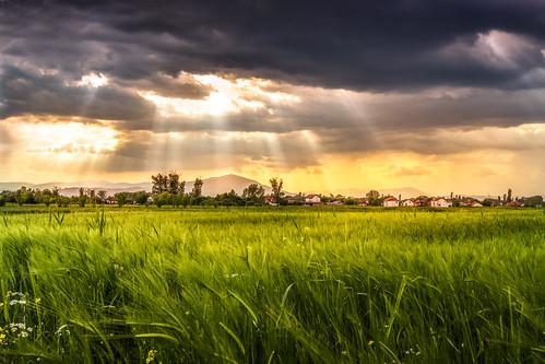 light sunset sky sunlight green nature field weather clouds rural skyscape landscape sundown illumination illuminated macedonia crops serene rays agriculture sunrays greenfield sunsetlight plain cloudscape vodno rurallandscape cloudsscape