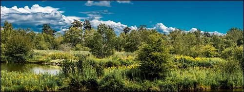 ca panorama canada landscape britishcolumbia pano delta reifel reifelbirdsanctuary martinsmith dramaticclouds nikonafsnikkor70200mmf28gedvrii 7imagepanorama nikond750 ©martinsmith