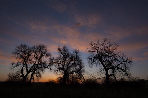 sunrise dawn colorado boulder cottonwood wondersofnature whiterockstrail earthnaturelife bouldercountyopenspaceandmountainparks