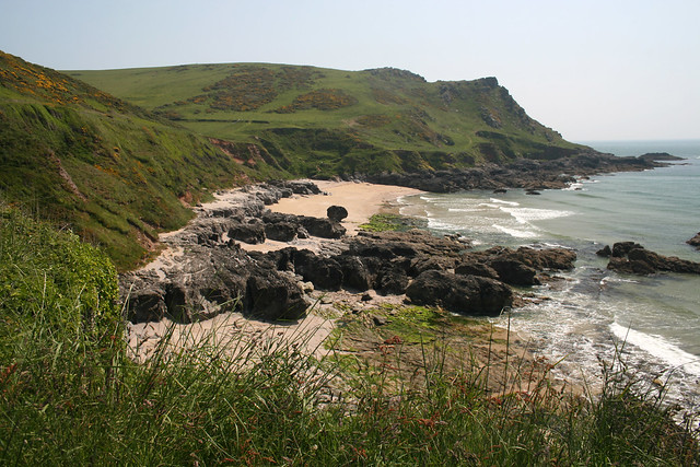 Limpet Cove