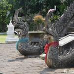 01 Viajefilos en Chiang Mai, Tailandia 106