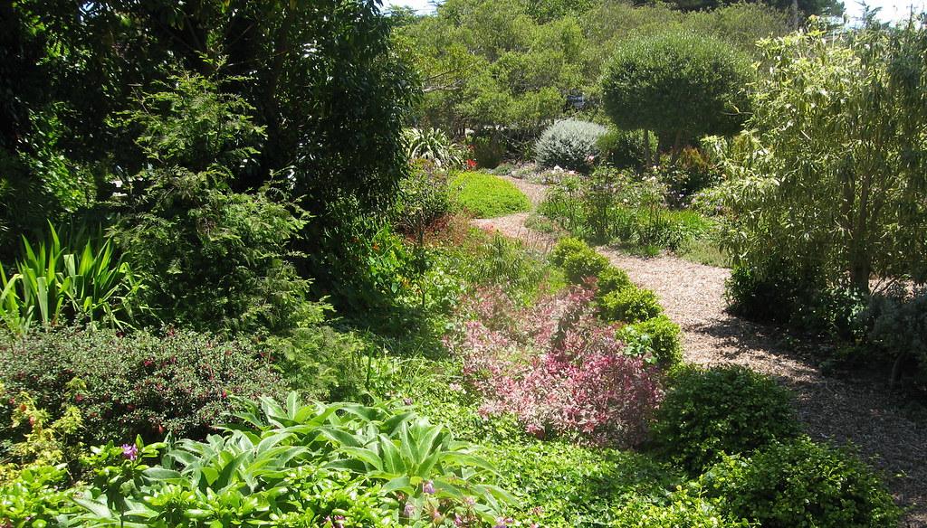 Sally Robertson's Artsy Garden in Bolinas