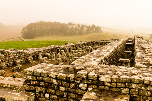 housesteads fort roman hadrianswall northumberland landscape mist granary archaeology ruins remains stonework hill tree woodland copse grass