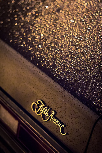 Fifth_Ave_Rain_Garage-4691 | by Bill_Acheson