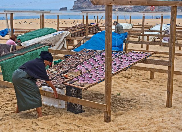 Secadero de sardinas, Nazaré (Leiria, Portugal)