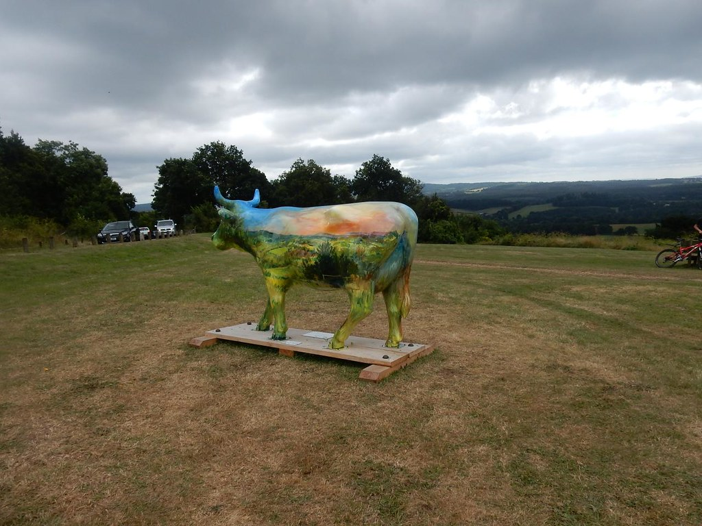 Ive looked at cows from both sides now.. .......from country side..... Guildford to Horsley Newlands Corner