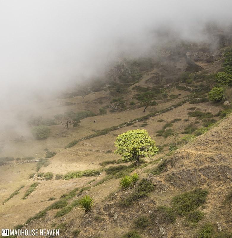 Cape Verde - 0680