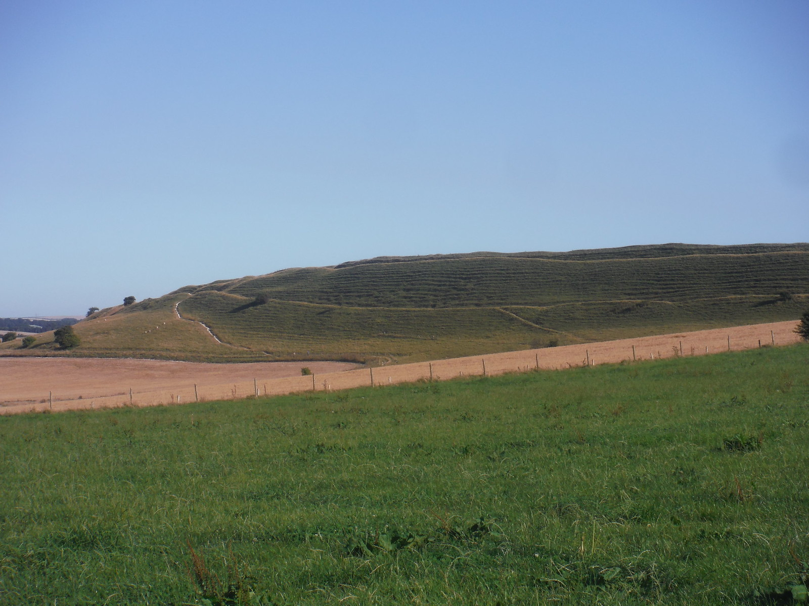 Maiden Castle, from near Clandon Farm SWC Walk 275 Dorchester South Circular or to Portesham