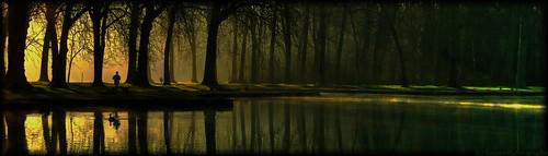 parc paysage panoramique bois belle lumière landscape soleil reflet eau sceaux jaune vert domainedesceaux
