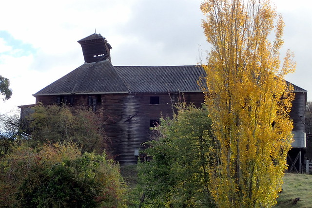 Autumn Colours - Oast House - Westerway