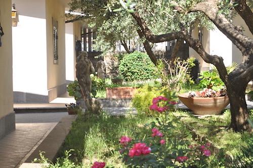DSC_0931   by hoteltecla