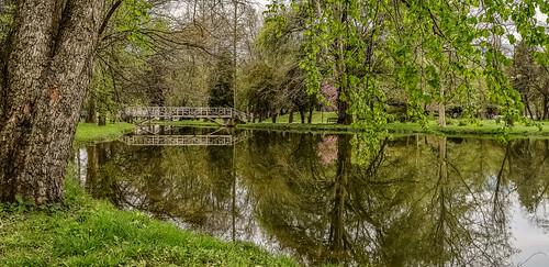 park bridge trees reflection tree reflections landscape outdoor macedonia greenery skopje