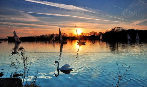 boats landscapes lakes parks swans pools ponds flicker yeadontarn yatchts theyorkshiredalesnationalpark