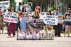 הפגנת תרנגולות 2012 3