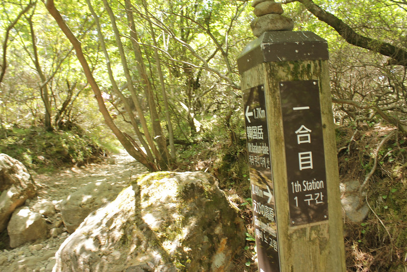 20140601-韓国岳-0222.jpg