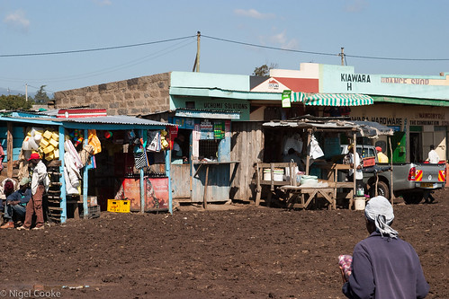 africa holiday view kenya safari