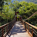 Suspension bridge of Sumidero Ecotourism Park por Andrey Sulitskiy