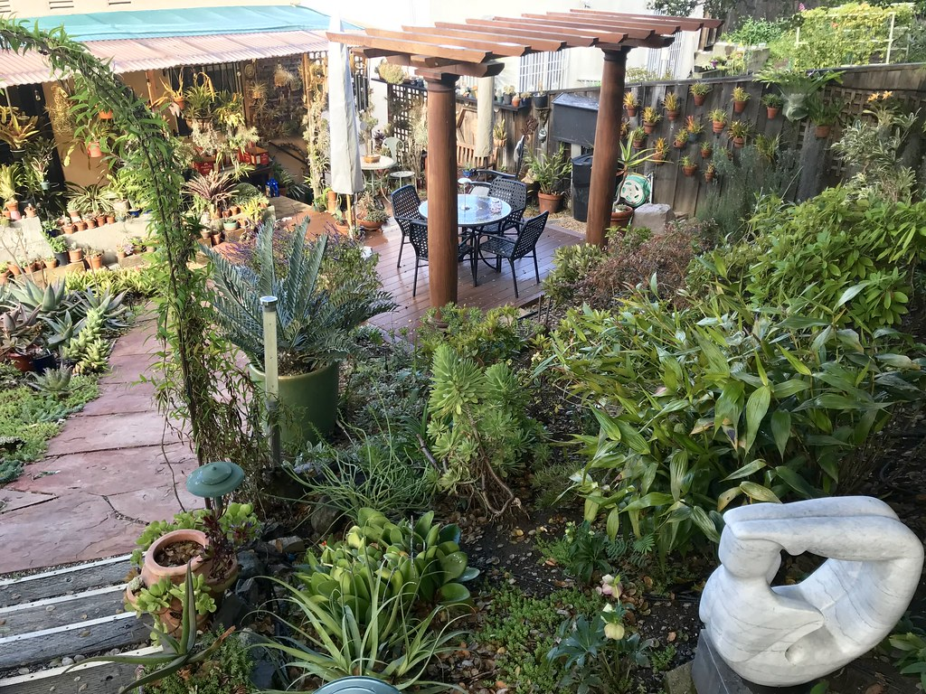 Coffee in the Garden - Oakland #2