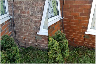 Ivy Removal - Brick Work Cleaners