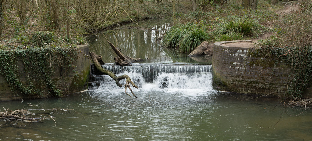 Image result for coombe country park river smite