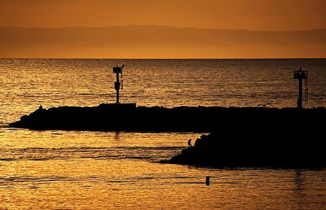 Seaside Silhouette
