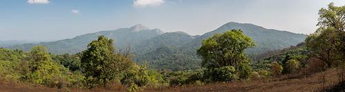 arbres montagnes paysage panorama forêt végétation kabbinakad karnataka inde ind