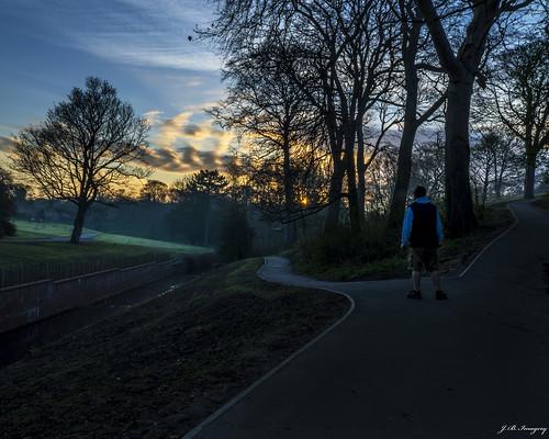 park trees sky clouds sunrise hall paths grounds selfie wallsend
