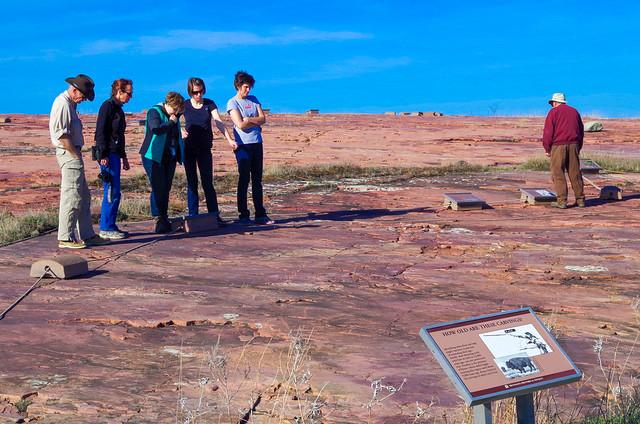 Viewing the Jeffers Petroglyphs