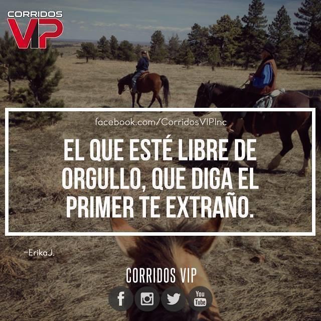 Te extraño.! 😔 #teamcorridosvip #corridosvip ...