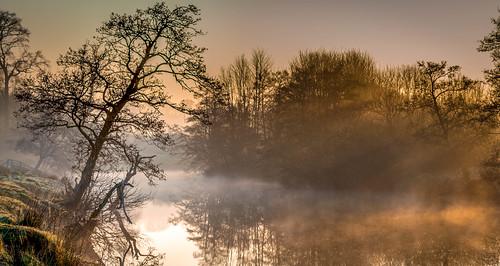 trees england sun mist castle sunrise river gold golden unitedkingdom alnwick northumberland northumbria rays rise aln
