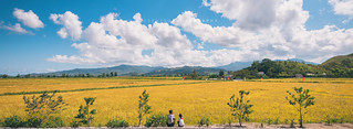 Chonsam Cooperative Farm | by reubenteo