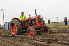 20140405 Vintage Tractor Run 411