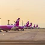 Peach Aviation Airbus A320-200s at Kansai International Airport (KIX/RJBB)