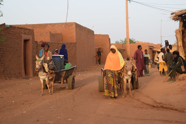 PPCR Niger Community Action Project for Climate Resilience