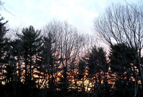 sunset sky bss putnamcounty carmelny treesillhouettes spring2015 bluepinks