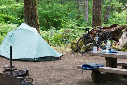 camp at Alsea Falls
