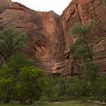 Towering Walls of Zion Canyon