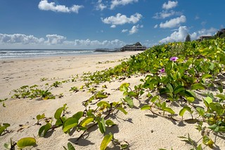 Currumbin Beach | by georg_dieter