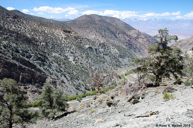 Owens Valley from Silver Canyon Road
