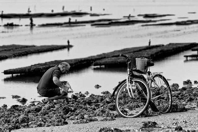 Pêche à... Bicyclette