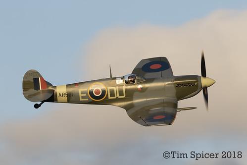 Golden Spitfire   by Tim Spicer Photography
