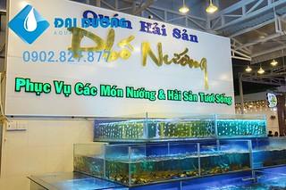 hồ hải sản 3 tầng kim tự tháp | by Hồ cá kiểng Đại Dương