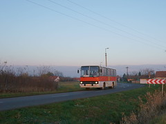 BAP-104
