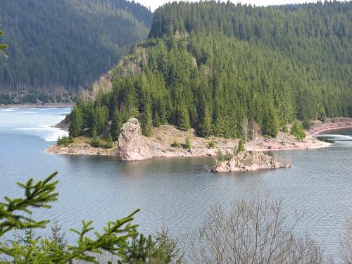 outdoor nature schmalwasser talsperre dam wald water wasser walk forest landscape landschaft thuringia thüringen germany germancute spring frühling