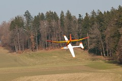 Fliegen am Bisehängli 2013
